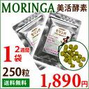 Moringa01_01