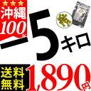 Moringa_3006