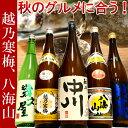 日本酒 飲み比べセット 越乃寒梅&八海山入り第45弾 1