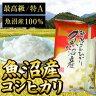 【特A】『魚沼産コシヒカリ』5kgEU50