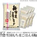 ショッピング新潟 [新潟 もち麦ごはんセット] 雪国もち麦 + 新潟産ミルキークイーン 6.8kg (1.8kg+5kg) 新潟秋葉産はねうまもち麦100% 約60食分 barley/mochimugi/niigata/akiha/made in japan