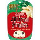 テクセルジャパン 未来果実ミライフルーツ りんご