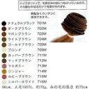 ショッピングJapan salonjapan エクステンションヒューマンヘアーみの毛 No713M マホガニー【smtb-s】