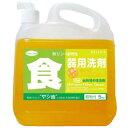 【業務用】クリーン・シェフ 食器用洗剤・濃縮タイプ 5L