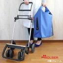 ROLSER 4輪フレーム ロルサー / フレームのみ ショ...