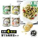 【お得】オーガニック 発芽豆 栽培キット レンズ豆 ひよこ豆 フェヌグリーク マングビーン 4個セット