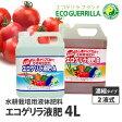 水耕栽培用 液体肥料エコゲリラ液肥A・B液(2本組)4L【お試し価格】プロの品質をご家庭でも!水耕栽培や土栽培にも!ハイポニカ液肥などと使い方は同じ。トマト栽培にオススメ