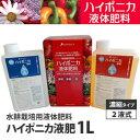 ハイポニカ1L液肥(A・B液2本組)ホームハイポニカ・水耕栽培に最適!土栽培にも有効なハイポニカ液体肥料[協和]