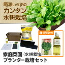 家庭菜園プランター栽培セット(水耕栽培 養液栽培)電源いらずでベランダ菜園に最適!種も肥料も一式セッ