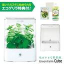 【5/25 1:59迄 クーポン利用→300円オフ】水耕栽培器 Green Farm Cube グリ