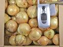 無農薬「サラダたまねぎ・サラダ玉ねぎ」【小玉ちゃん】/約5kg/約80玉天草市の井上さんが、無農薬、無化学肥料で自家製完熟有機肥料で栽培!新たまねぎ新玉ねぎ新タマねぎ
