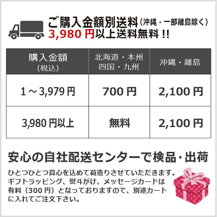【送料無料】ツイスパソーダ スターターキット&...の紹介画像3