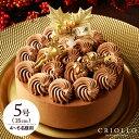 クリスマスケーキ ショコラバリ ノエル(5号:15cm)【冷凍便】【チョコレートケーキ】【送料込】【あす楽対応】