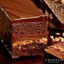 【1月30日発送開始】【チョコレートケーキ】トレゾー・バリ 2〜3名様用【常温便】バレ
