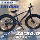 ファットバイク ビーチクルーザー 自転車 24インチ FATBIKE ファットバイク シマノ7