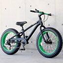 ファットバイク ビーチクルーザー 自転車 20インチ FATBIKE シマノ7段