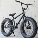 ファットバイク ビーチクルーザー 自転車 20インチ FATBIKE ファットバ