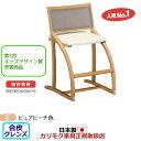 カリモク デスクチェア・学習チェア・学習椅子/ XT2401 cresce/クレシェ ピュアビ