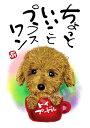 スミレとぉちゃんのメッセージはがき 犬シリーズ トイプードル 【メール便対応】【 葉書 和製はがき ポストカード メッセージカード 癒し 和み 言葉 絵 】