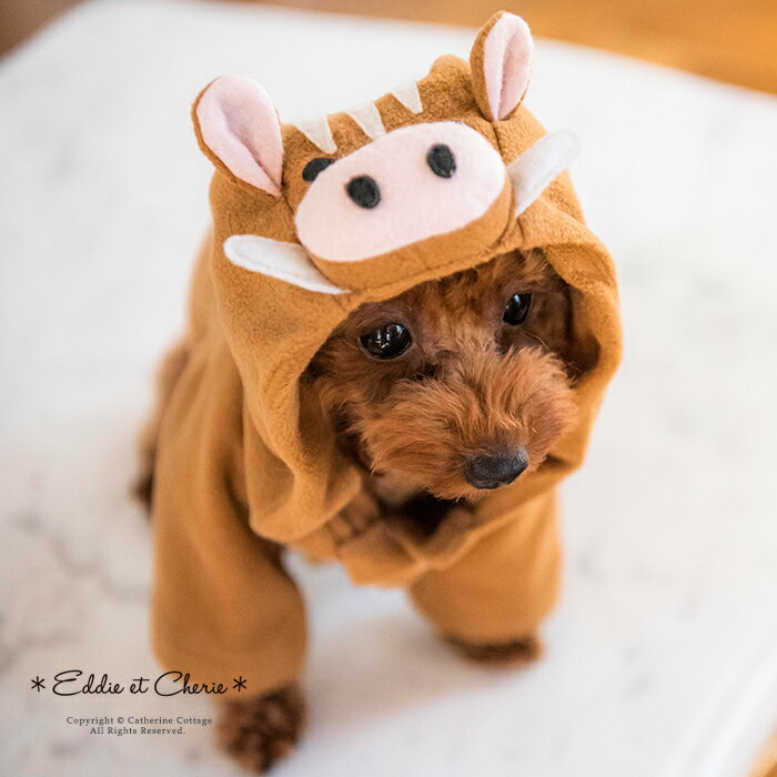 犬用イノシシ着ぐるみパーカー[2019年干支ウリ坊お正月コスチューム犬の服ドッグウェア犬服猫ペットグ