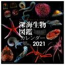 日本プロセス秀英堂 カレンダー 2021年版 深海生物図鑑 ...