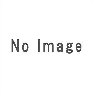 テイクツー・インタラクティブ・ジャパン グランド・セフト・オート