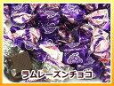 【3,000円(税別)で送料100円(税別)】ラムレーズンチョコレート(国産)150g【RCP】