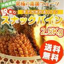 スナックパイン 送料無料 沖縄県産 2.5kg(2〜5玉)産地直送、フルーツ 果物(パイナッ