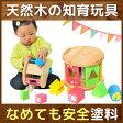 【エデュテの木のおもちゃ】KOROKOROパズル(知育玩具 木製 おもちゃ 出産祝い 誕生日プレゼント オモチャ エデュテ ギフト 赤ちゃん ベビー 幼児 型はめ 積み木 ブロック つみき 積木 パズル 0歳 1歳 一歳 男の子 男 女の子 女 コロコロパズル こども 子ども 1歳児)