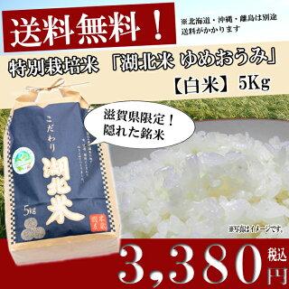 お米/湖北米ゆめおうみ【白米】5kg特別栽培米【送料無料(一部除く)】
