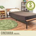 �ѥ��ץ٥å� �ڥ��󥰥��Cineraria Iron bed
