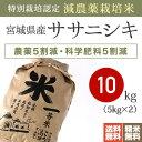 【送料無料】特別栽培米新米 28年産 宮城県産ササニシキ [減農薬栽培米 10kg]