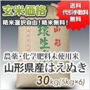 ●この商品は沖縄・北海道も送料無料です!※石抜き・籾殻精選済み【送料無...