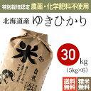 【送料無料】特別栽培米(農薬・化学肥料不使用)28年産 北海道産 ゆきひかり [お米 30kg]※放射能検査・残留農薬検査(検出なし)