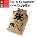 無農薬 玄米 米 5kgひとめぼれ 宮城県産 特別栽培米 30年産 送料無料