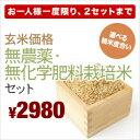 【送料無料】新米 23年産「無農薬栽培 玄米」食べ比べセット[玄米2k×2銘柄]【あす楽対応】