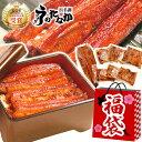 送料無料!新春大SALE 福袋 食品 2020 海鮮 魚≪梅...