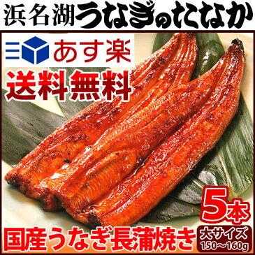送料無料 うなぎ長蒲焼き(150〜160g5本)うなぎのたなか [nagakaba01-5] GIFT BOX 還暦 喜寿 お祝い プレゼント[鰻] AA