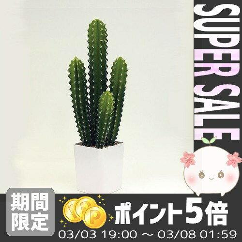 【あす楽対応】 アーティフィシャルグリーン アスカ asuka 55cm [HAGIHARA] *【光触媒 人工観葉植物 造花 多肉植物 サボテン 消臭 水やり不要】