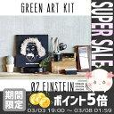 【あす楽対応】 [URBAN GREEN MAKERS] GREEN ART KIT 02.EINSTEIN【アーバングリーンメーカーズ アインシュタイン グリ...