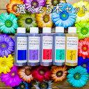【あす楽対応】パレス化学 切花着色剤ファンタジー 100ml お得な選べる5本セット 全21色【茎