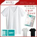 ショッピンググンゼ 【グンゼ】YGドライ メンズインナー VネックTシャツ 吸汗 速乾  Vネック半袖 サイズ【M L】カラー【白、黒、ライトグレー】 お得な5枚セットもございます 【楽天BOX対応商品】