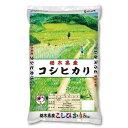 カカシ米穀 栃木県産こしひかり 5KG