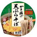 ヤマダイ 凄麺 かき揚げ天ぷらそば 116G×12個セット