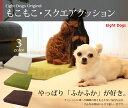 ED80070M [エイトドッグス] オリジナル・もこもこスクエアクッション【ペットソファ/ペットベット/犬ベッド/スクエアベット/カドラー/介護マット/犬 介...