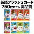 英語教材 フラッシュカード 750枚セット / 幼児 子供 小学生 英会話教材 英語 カード