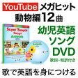幼児英語 DVD Super Simple Songs Animals DVD 動物編 【正規販売店 メール便送料無料】 英語教材 知育玩具 1歳 2歳 3歳 4歳 5歳 6歳 7歳 おもちゃ 女の子 男の子 幼児 子供 小学生 英語ソング