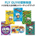 英語絵本 FLY GUY fun Readers スカラスティック フライガイ ファン リーダーズ ボックスセット 5冊 CD1枚 クリスマスプレゼント