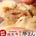 【ランキング1位獲得 送料無料】豚まん 10個入り 神戸南京町の老舗焼豚屋が創る絶品ぶたまん