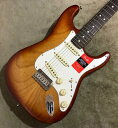 Fender American Professional Stratocaster 〜Sienna Sunburst / Rosewood Fingerboard〜 #US17098987 【3.64kg】【フェンダー】【ア..
